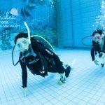 親子ダイバー☆来月にはオーストラリアのGBRへ!