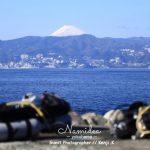富士山が見える!初島ダイビングツアー!