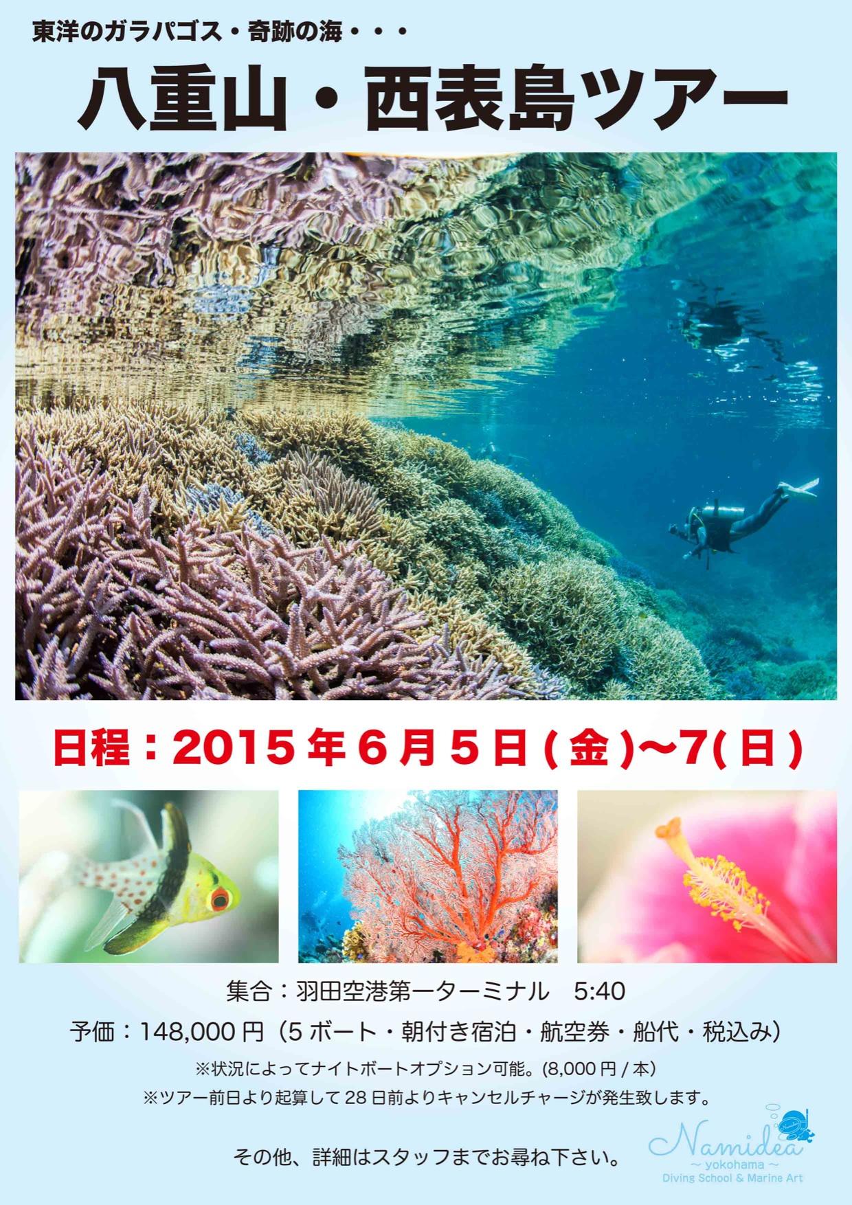 奇跡の海!沖縄 西表島ダイビングツアー
