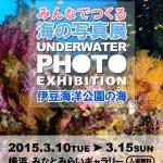 「伊豆海洋公園の海」の写真展のご案内☆