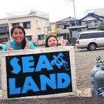 台風も問題なし!田子の砂地とサンゴは南国みたい!