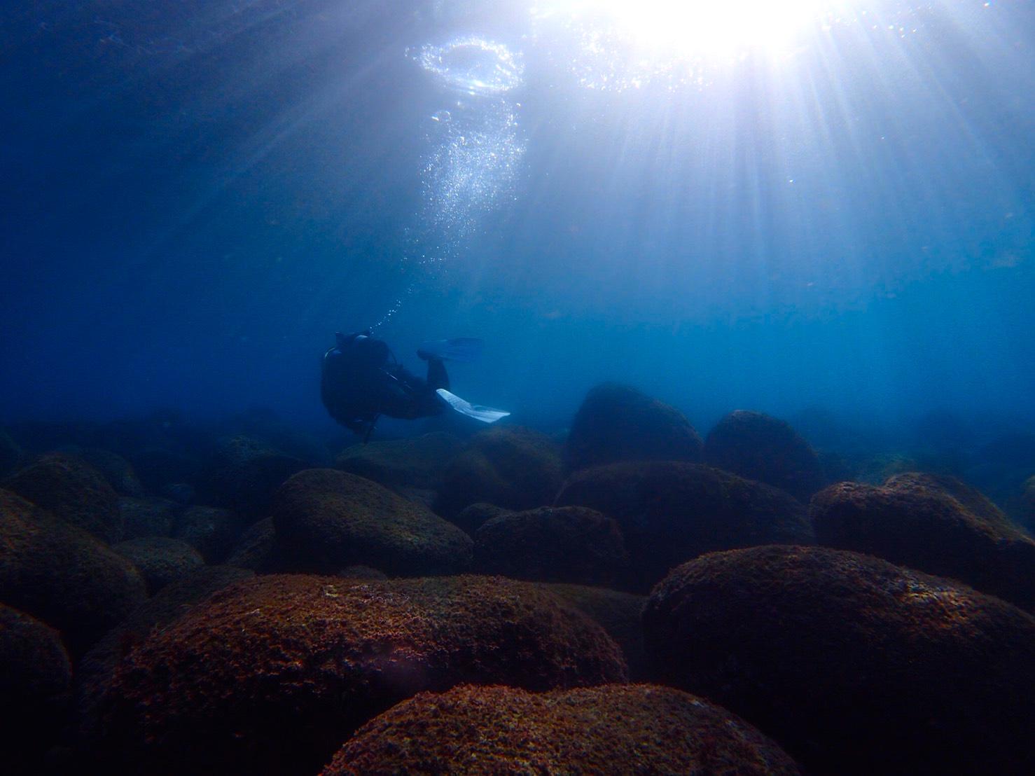 ダイバーと海