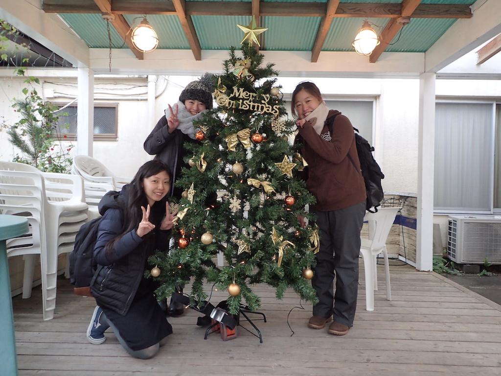 大瀬崎のクリスマスツリー