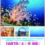 ベストシーズン黒潮大島ツアー!