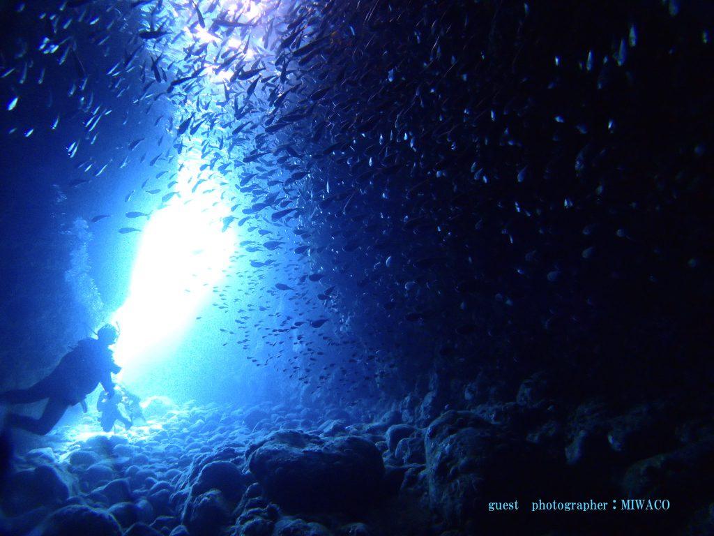 小蝶アラシ 洞窟