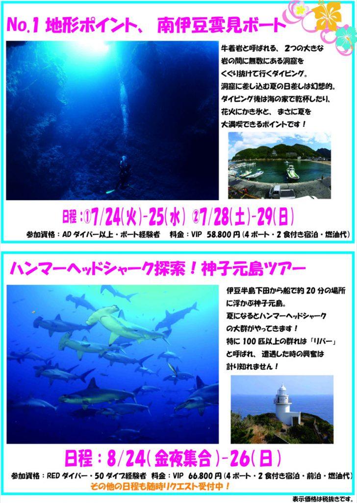 伊豆地形No.1ポイント雲見・ハンマーヘッド群れる海、神子元!