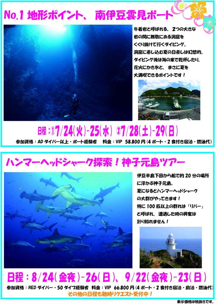 Namidea Yokohama 真夏のダイビングツアー