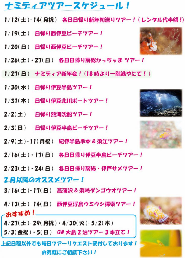 ナミディアツアースケジュール 1月〜のおすすめツアー