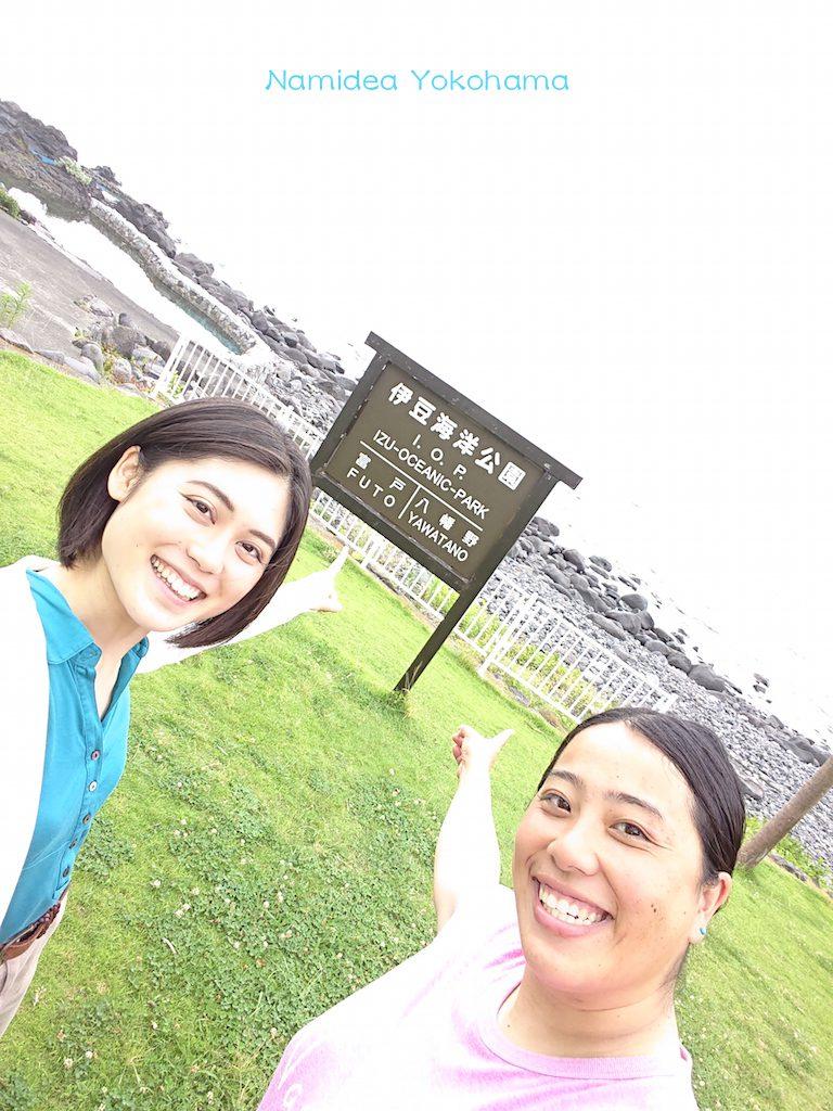 伊豆海洋公園 ダイビング日和でした!