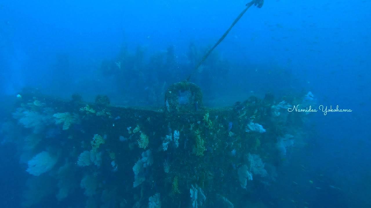 熱海沈船 船首から