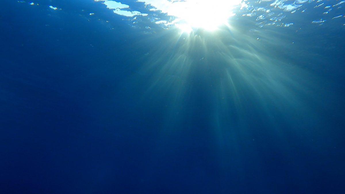 水中世界の太陽!